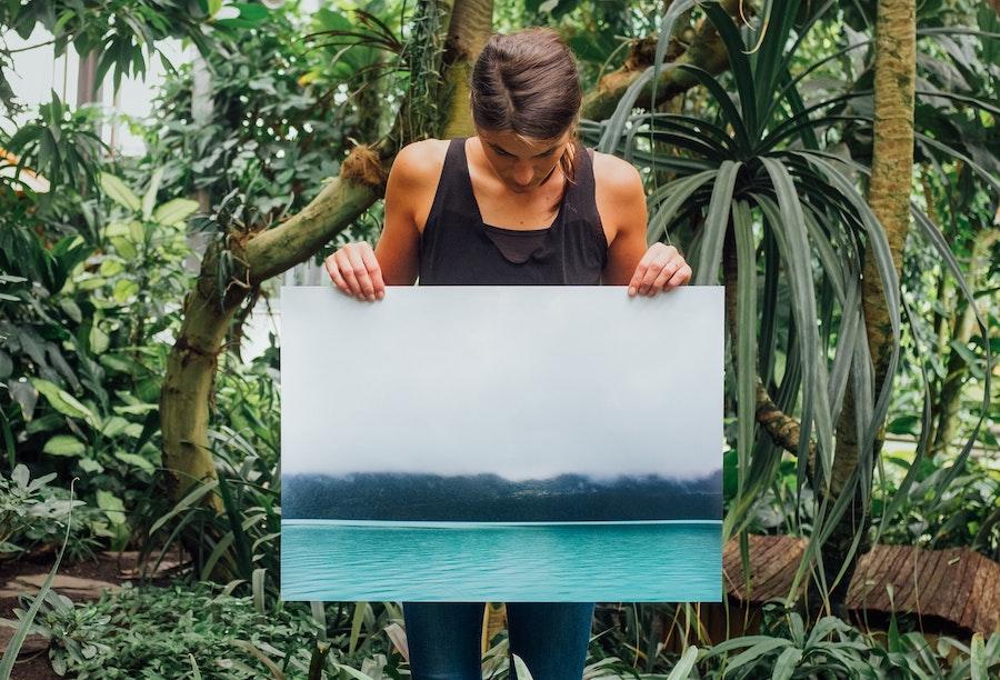 canvas print size canvaschamp