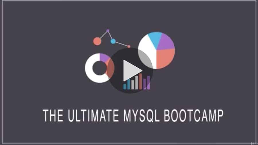 The Ultimate MySQL Bootcamp