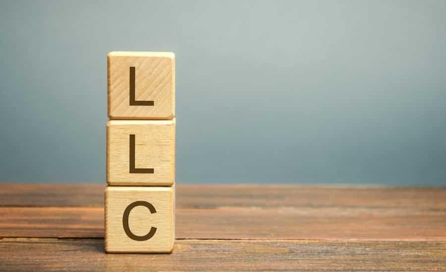llc type guide